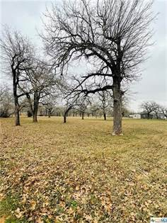 Lots And Land for sale in 1260 County Road 425, Stockdale, TX, 78160