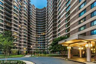 Condo for rent in 1131 UNIVERSITY BLVD W #VARIOUS, Silver Spring, MD, 20902