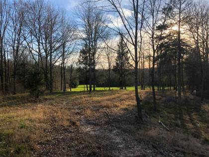 Lots And Land for sale in 3695 SHADY GROVE RD, Durant, MS, 39063