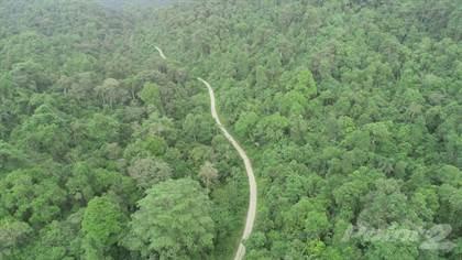 Lots And Land for sale in Finca Ecologica de 67hec. Para Proyecto Ecoturistico (Vida Silvestre) Cod: OL-LOR, Olon, Santa Elena