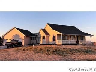 Single Family for sale in 8755 E Main St, Williamsville, IL, 62693