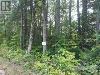 Land for sale in 1363 WILLIAMSPORT ROAD N, Huntsville, Ontario