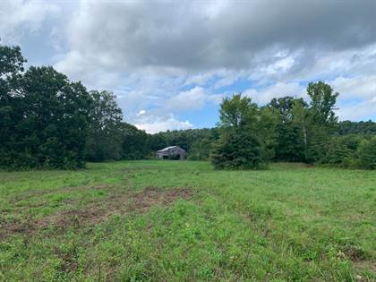 Lots And Land for sale in 5000 KY 206, Dunnville, KY, 42528