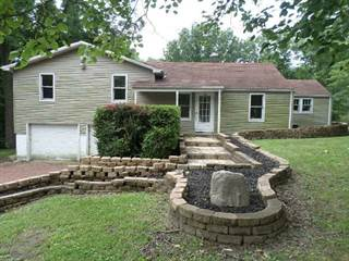 Single Family for sale in 793 Hillshire Road, South Wheatland, IL, 62521
