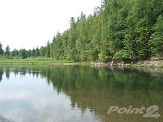 Land for sale in 2996 Mabel Lake Road, Lumby, British Columbia, V0E 2G6