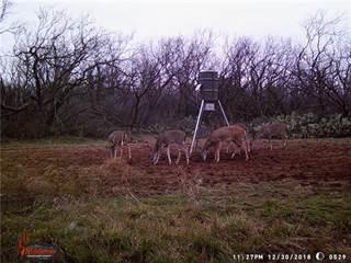 Land for sale in 20ac TBD Nora Miller, Abilene, TX, 79602