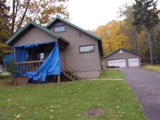 Single Family for sale in 3947 W US2, Iron River, MI, 49935