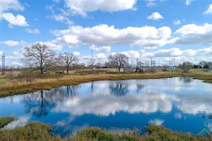 Lots And Land for sale in 4101 COUNTY ROAD 1110, Fruitvale, TX, 75127