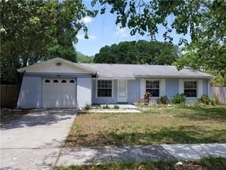 Single Family for sale in 221 FAITHWAY DRIVE, Brandon, FL, 33584