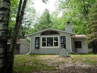 Single Family for sale in 6482 TAMRACK STREET, Gladwin, MI, 48624