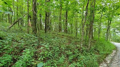 Lots And Land for sale in Raven Ridge Rd 10, Scaly Mountain, NC, 28775