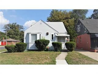 Single Family for sale in 19216 SAINT MARYS Street, Detroit, MI, 48235
