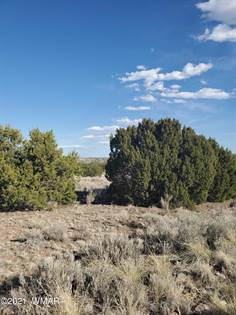 Lots And Land for sale in 76 County Road 5056, Greater St. Johns, AZ, 85924