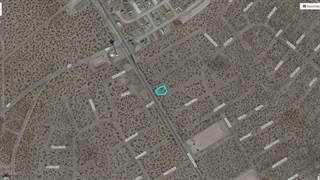Land for sale in 1 Darrington, El Paso, TX, 79928