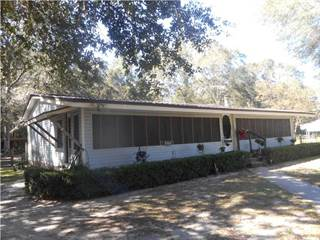 Residential Property for sale in 137 HIGH WATER RD, Wewahitchka, FL, 32465