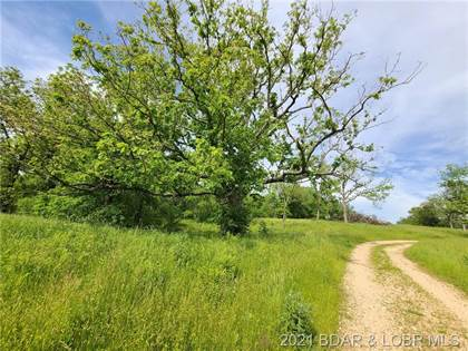 Farm And Agriculture for sale in Tract #5 Rollins Creek Road, Richland, MO, 65556