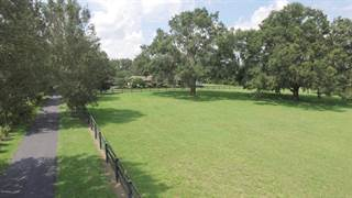 Farm And Agriculture for sale in 3170 NW 100th Street, Ocala, FL, 34475