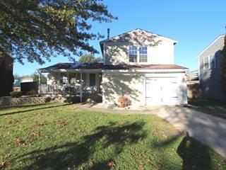 Single Family for sale in 20636 South Acorn Ridge Drive, Frankfort, IL, 60423