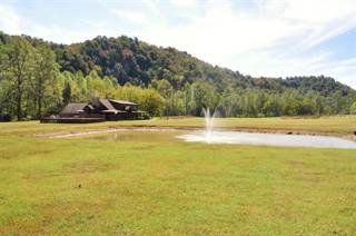 Single Family for sale in 4525 Highway 315, Booneville, KY, 41314
