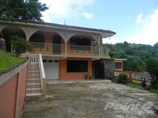 Residential Property for sale in Camino los Tapia, Rio Grande, PR, 00745