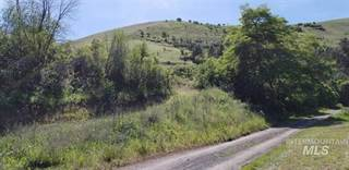 Farm And Agriculture for sale in Howard Gulch, Juliaetta, ID, 83535