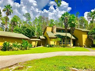 Single Family for sale in 3001 PINE HILL ROAD, Palm Harbor, FL, 34683