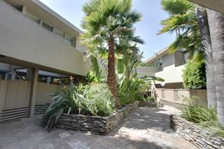 Apartment for rent in 850 Moraga Drive - One Bed - One Bath, Los Angeles, CA, 90049