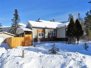Residential Property for sale in 1070 6th Ave, Valemount, British Columbia