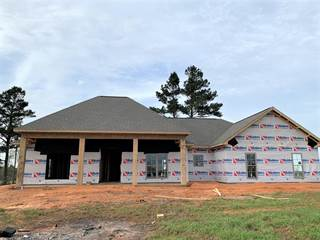 Single Family for sale in 3 Josie Drive, Columbia, MS, 39437