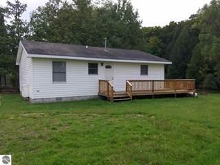 Single Family for sale in 10791 Riverside Drive, Honor, MI, 49640