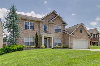 Single Family for sale in 6216 Daniels Branch Lane, Knoxville, TN, 37924