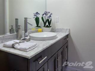 Apartment for rent in Altis at Grand Cypress - Redbud, Land O' Lakes, FL, 33549