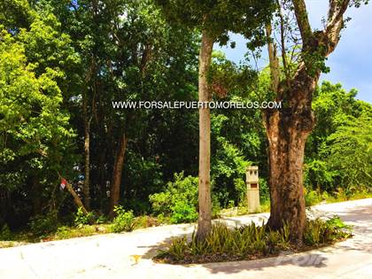 Lots And Land for sale in puerto morelos, Puerto Morelos, Quintana Roo