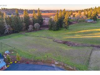 Land for sale in 24835 SW MOUNTAIN RD, Stafford South, OR, 97068