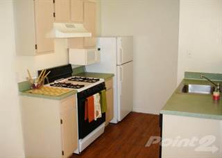 Apartment for rent in Reflections, Riverview, FL, 33578