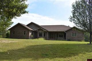 Single Family for sale in 902 COUNTRY CLUB DRIVE, Theodosia, MO, 65761