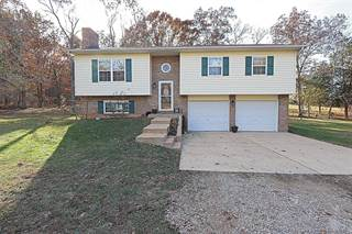 Single Family for sale in 3430 Y Hwy, Valles Mines, MO, 63087