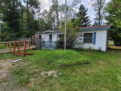Residential Property for sale in 1675 Mendota Lane, St. Helen, MI, 48656