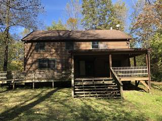 Single Family for sale in 275 Spanish Bluff Road, Anna, IL, 62906