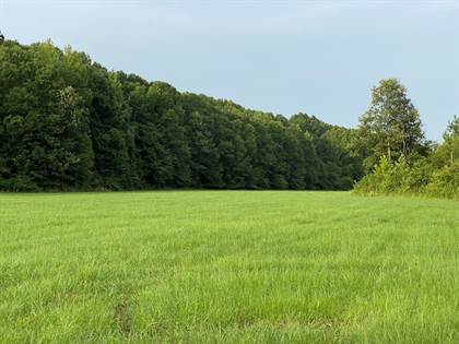 Lots And Land for sale in 17052c Hwy 28 W, Hazlehurst, MS, 39083