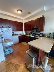 Apartment for rent in 203 Franklin street  A3, Greenpoint, NY, 11222