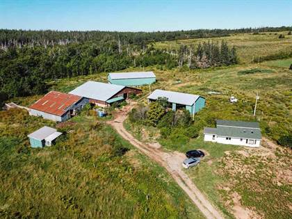 Farm And Agriculture for sale in 6471 No. 19 Highway, Cape Breton Island, Nova Scotia