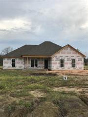 Single Family for sale in 1013 lot 9 CR 385, Myrtle, MS, 38650