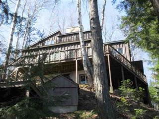 Single Family for sale in 11298W Boot Lake, Manistique, MI, 49854