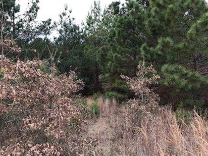 Lots And Land for sale in 9999 Rand Cowlen Road, Jefferson, TX, 75657