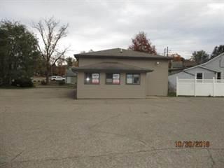 Comm/Ind for sale in 218 1st Street, Fenton, MI, 48430