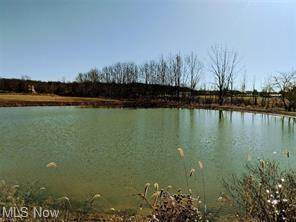 Lots And Land for sale in Theil Rd, Jefferson, OH, 44047