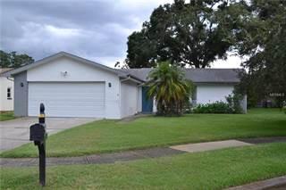 Single Family for rent in 2760 LOMOND DRIVE, Palm Harbor, FL, 34684
