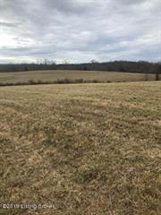 Residential Property for sale in 2945 New Liberty-Sparta Rd, Sparta, KY, 41086