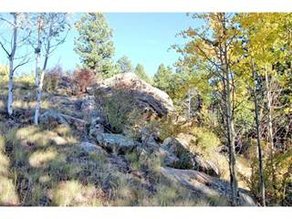 Land for sale in 140 Chalk Circle Trail, Florissant, CO, 80816